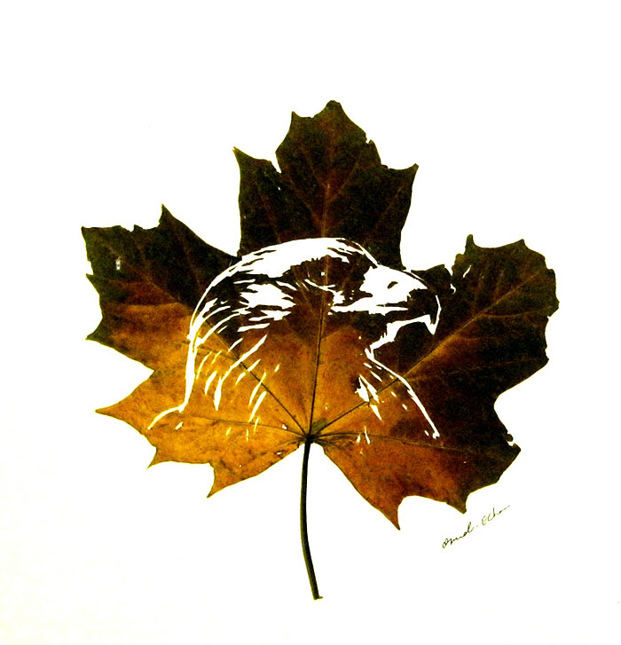 leaf-cutting-omid-asadi-6
