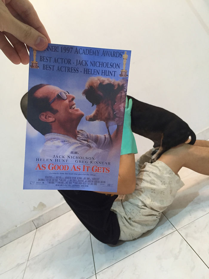 instagrammer-mashes-up-famous-movie-posters-with-real-life-puppies-6__700